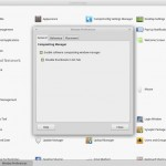 Linux Mint 17_1 MATE - Control Center - Window Preference